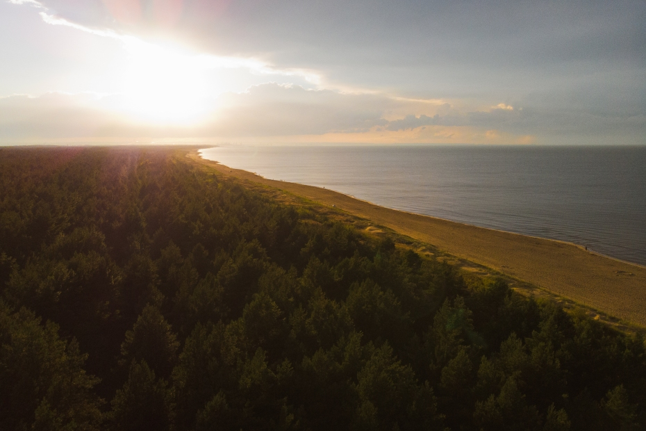 Plaża Wyspa Sobieszewska